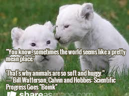 Animal Quotes Quotes To Remember